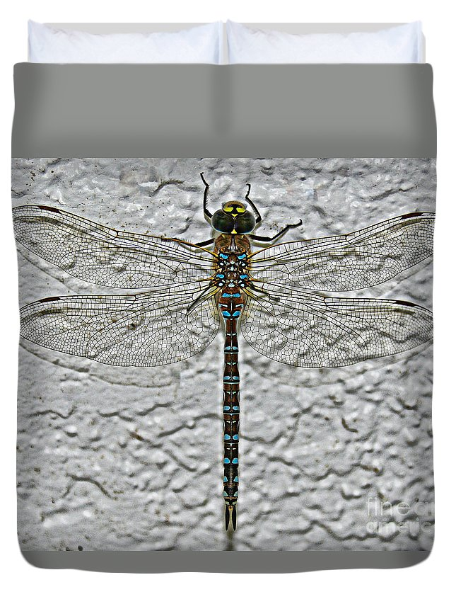 South Dakota Duvet Cover featuring the photograph Wings On Stucco by M Dale
