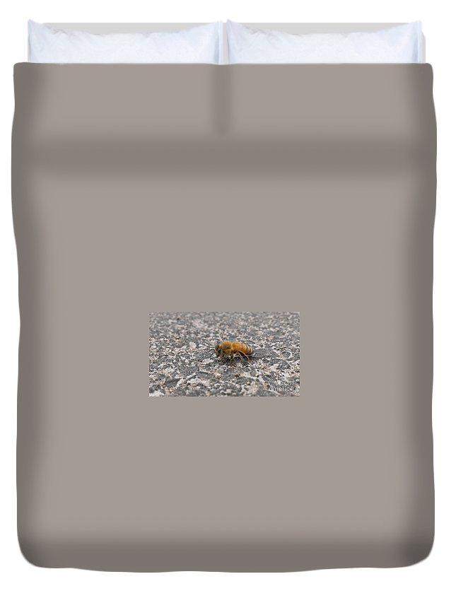 Bee Duvet Cover featuring the photograph Wings Too Fast To See by LKB Art and Photography