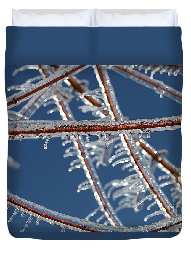 Winter Duvet Cover featuring the photograph Winter Blue by Nadine Rippelmeyer