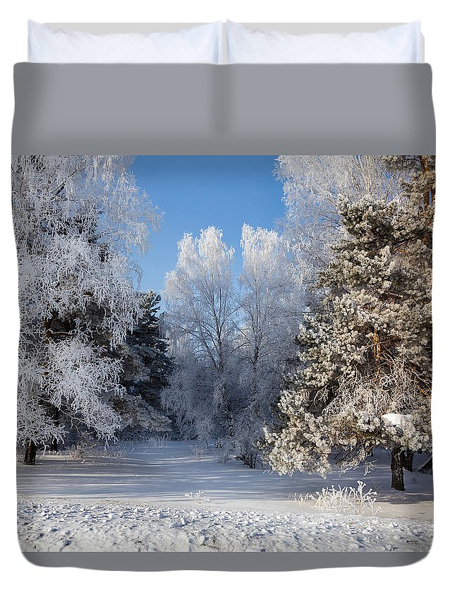 Victor Kovchin Duvet Cover featuring the photograph Winter Charm by Victor Kovchin