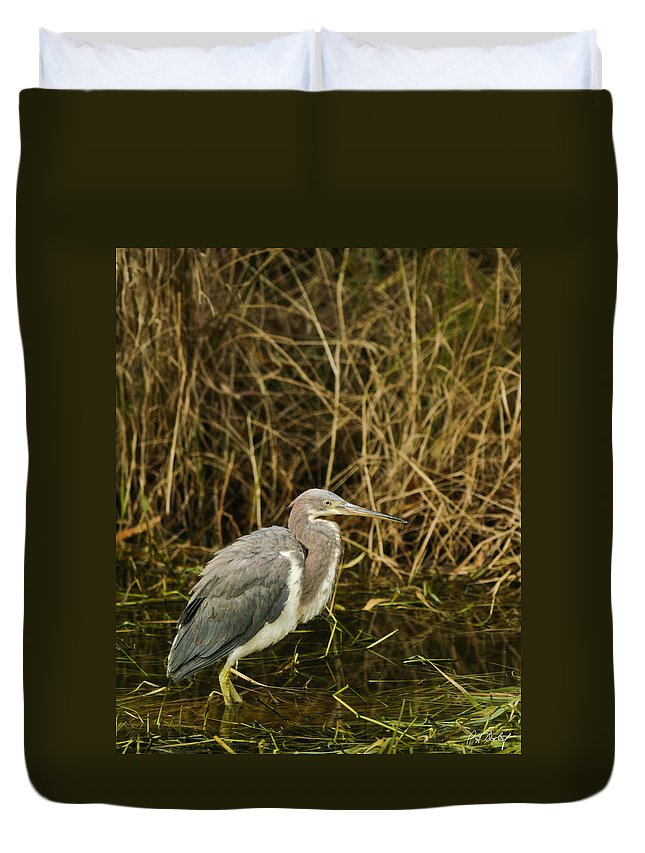 Bird Duvet Cover featuring the photograph Winter Coat by Phill Doherty