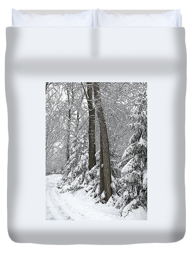 Winter Duvet Cover featuring the photograph Winter Drive by Tom Reynen