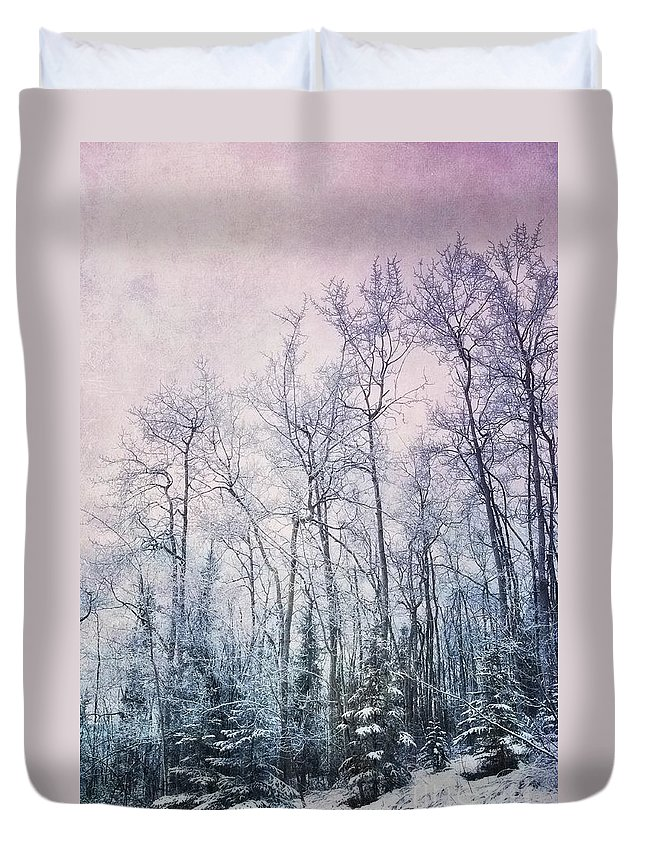 Forest Duvet Cover featuring the photograph Winter Forest by Priska Wettstein