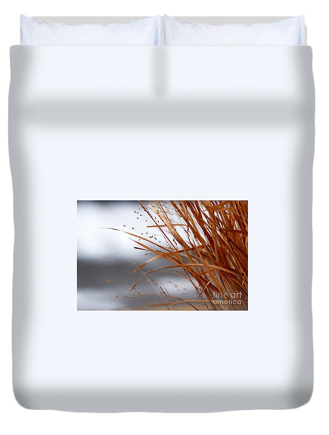 Grass Duvet Cover featuring the photograph Winter Grass - 2 by Linda Shafer