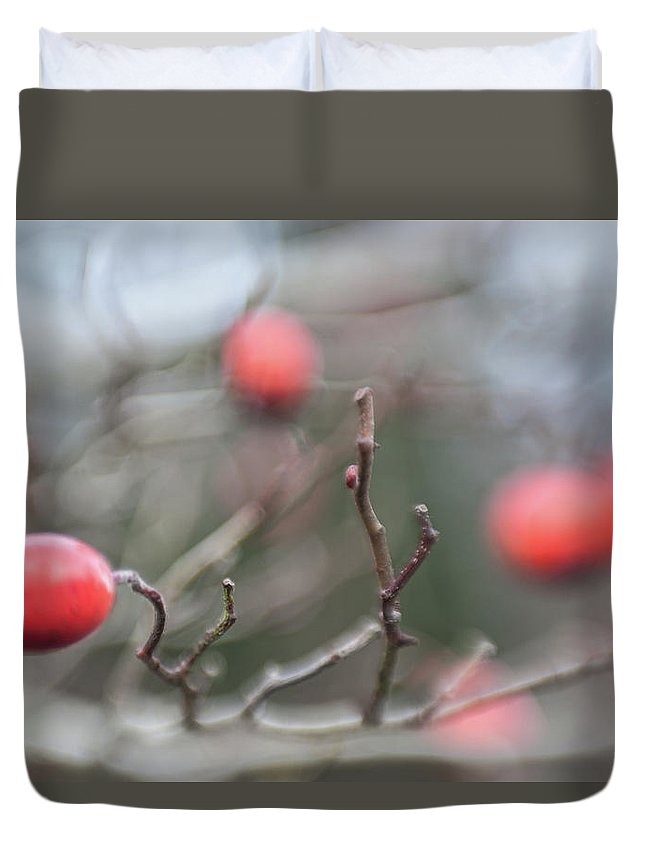 Red Berry Duvet Cover featuring the photograph Winter Hawthorn by Scott Campbell