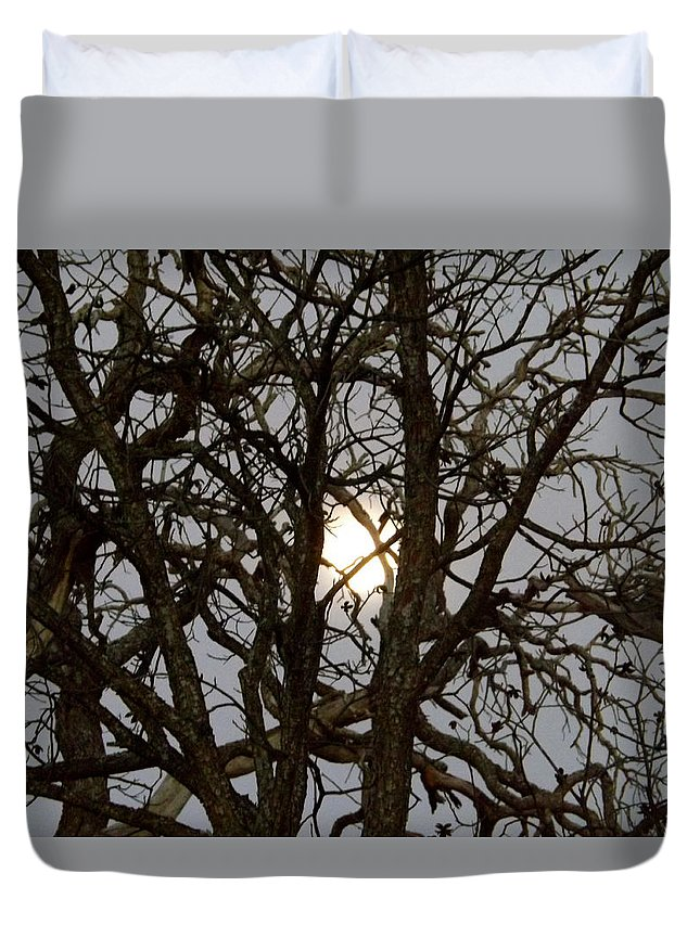 Nature Duvet Cover featuring the photograph Winter Moon by Annie's Images
