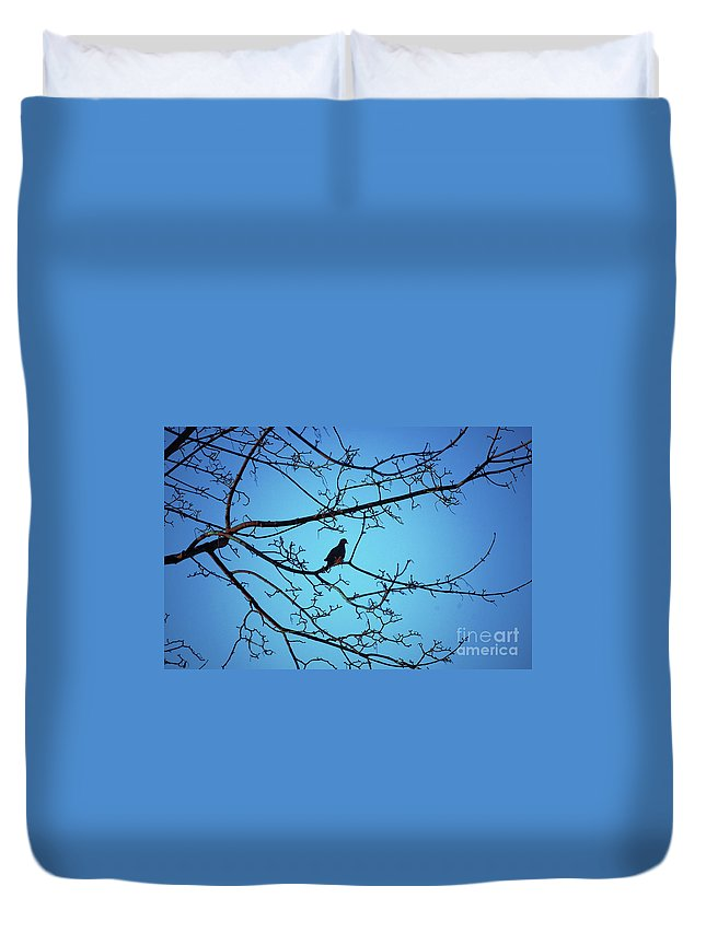 Mourning Dove Duvet Cover featuring the photograph Winter Mourning by Faith Harron Boudreau