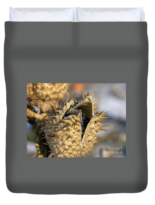 Winter Nature Duvet Cover featuring the photograph Winter Seed Pod by Carol Groenen
