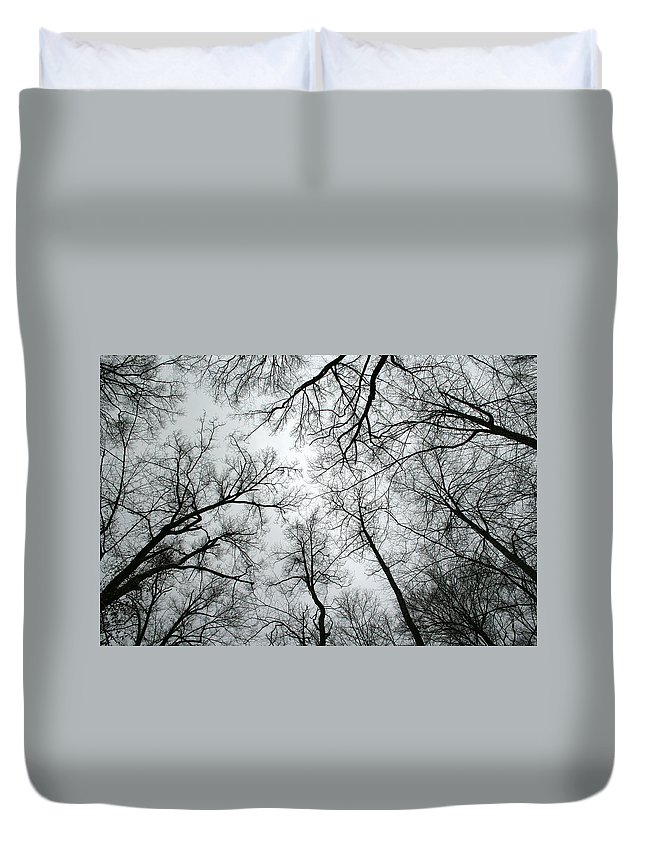 Winter Sky Tree Trees Grey Gloomy Peaceful Quite Calm Peace Cloudy Overcast Dark Duvet Cover featuring the photograph Winter Sky by Andrei Shliakhau