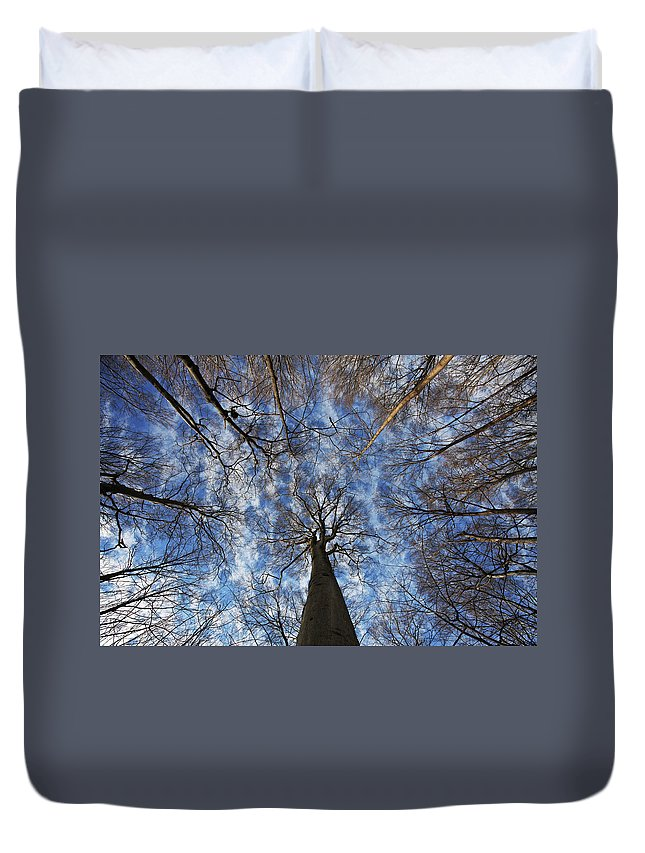 Botany Duvet Cover featuring the photograph Winter Sky by Mircea Costina Photography