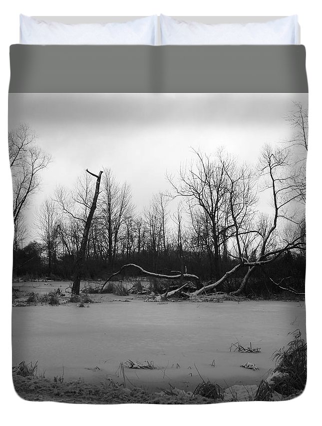 Swamp Duvet Cover featuring the photograph Winter Swamp by Michelle Miron-Rebbe