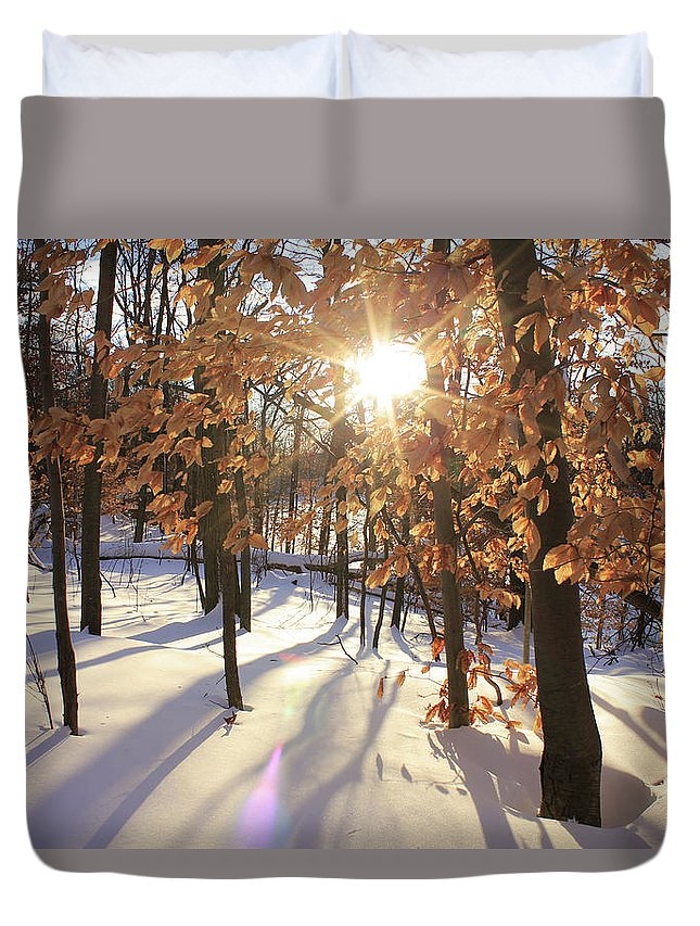 Winter Duvet Cover featuring the photograph Winter Trees #1 by Dane Elcar