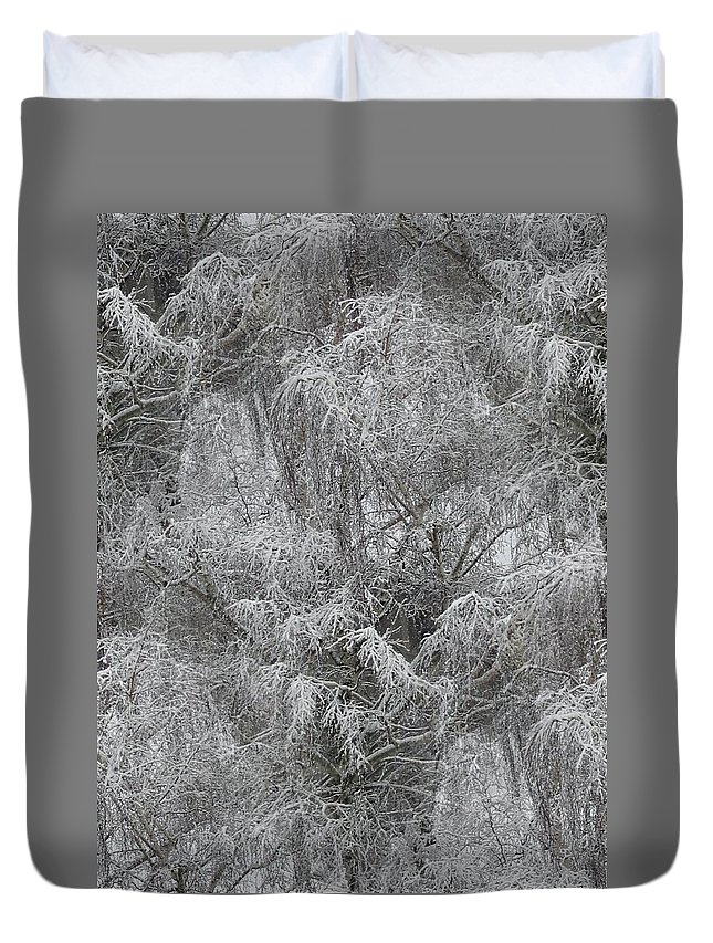 Winter Duvet Cover featuring the photograph Winter Trees by Tim Allen