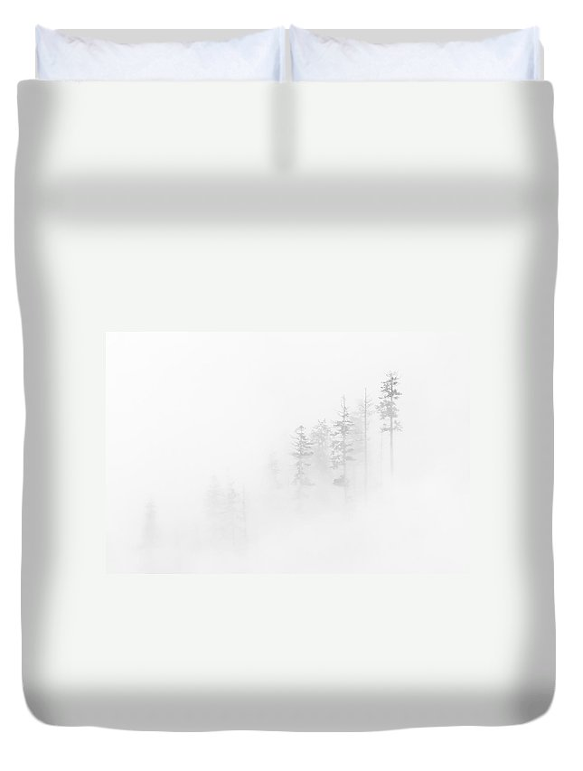 Winter Duvet Cover featuring the photograph Winter Veil by Mike Dawson