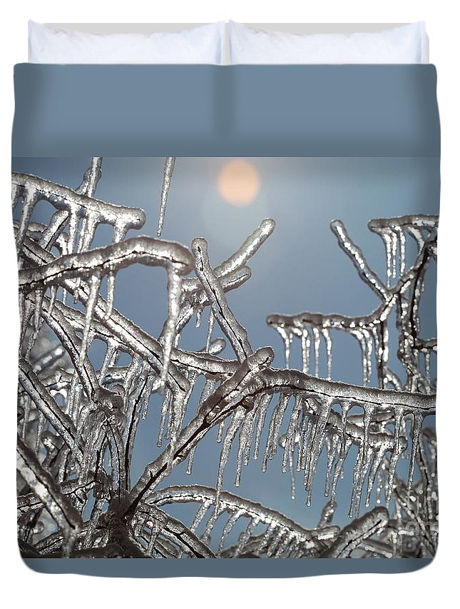 Winter Duvet Cover featuring the photograph Winter Warmth by Nadine Rippelmeyer