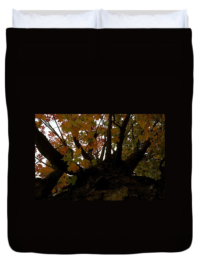 Autumn Duvet Cover featuring the painting Winter Warning by David Lee Thompson