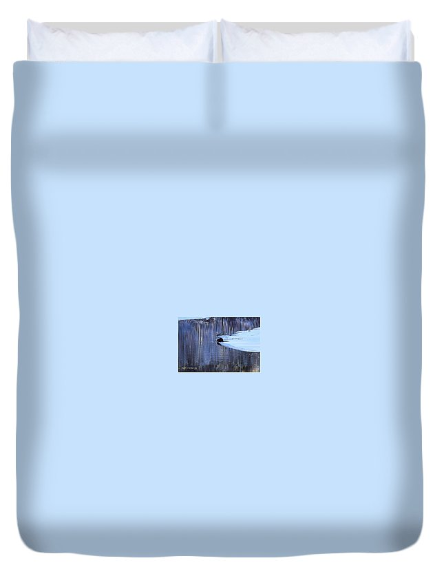 Beaver Duvet Cover featuring the photograph Winter Wildlife In New England by Cheryl Braley