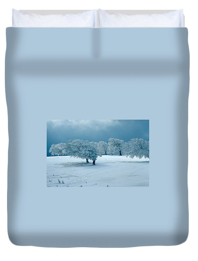 Winter Duvet Cover featuring the photograph Winter Wonderland by Flavia Westerwelle