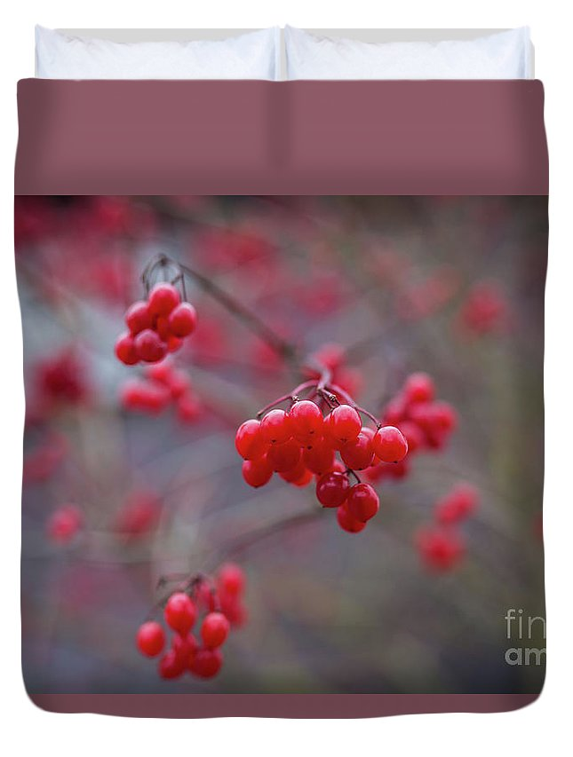 Winterberries Duvet Cover featuring the photograph Winterberries by Eva Lechner