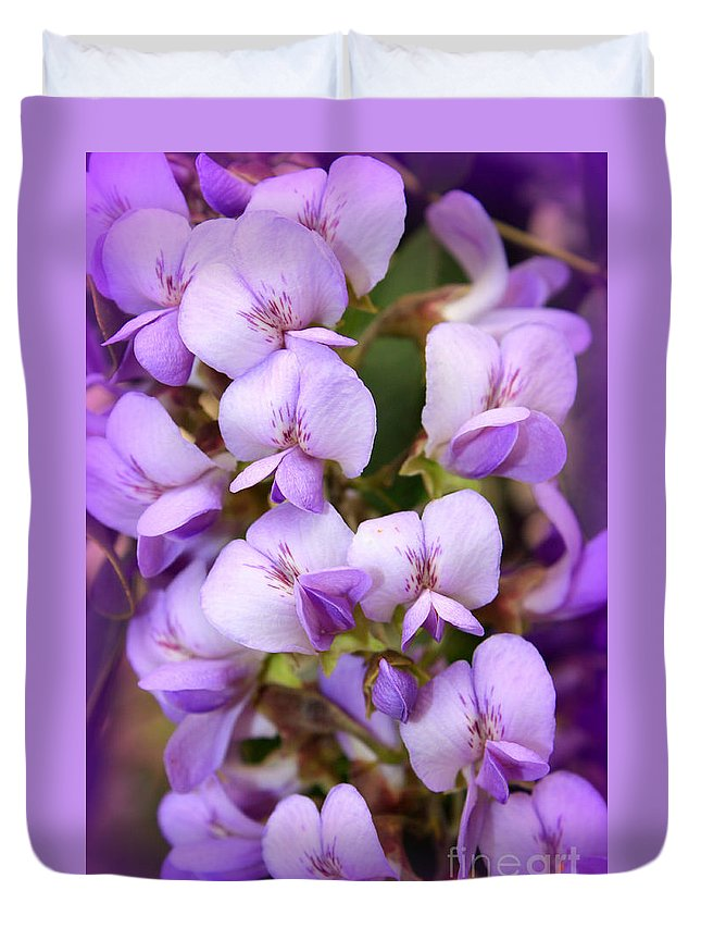 Purple Duvet Cover featuring the photograph Wisteria Blossoms by Carol Groenen