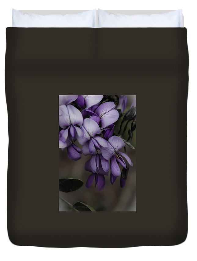 Wisteria Flowers Duvet Cover featuring the photograph Wisteria by Jill Smith