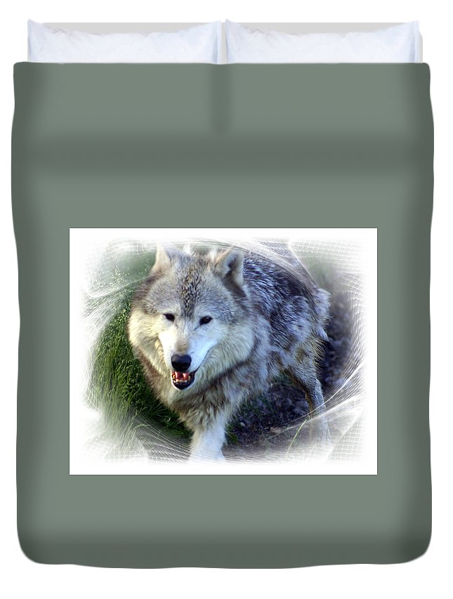 Wolf Duvet Cover featuring the photograph Wolf by Marty Koch