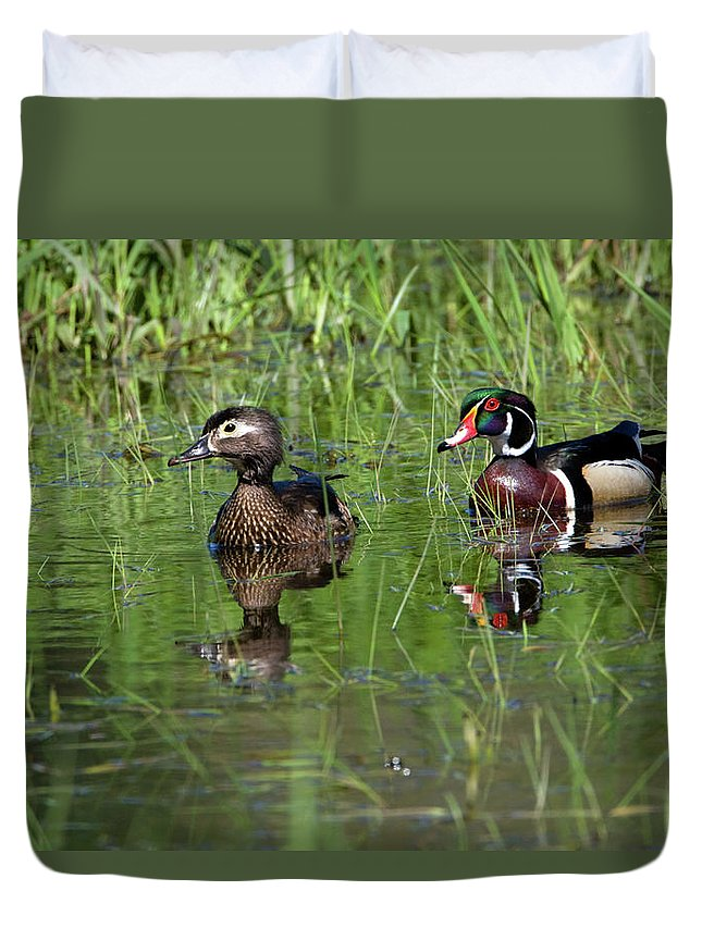Animal Duvet Cover featuring the photograph Wood Duck Couple by Randall Ingalls