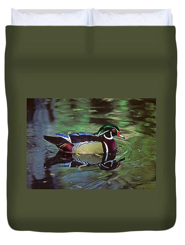 Wood Duck Duvet Cover featuring the photograph Wood Duck by Marie Hicks