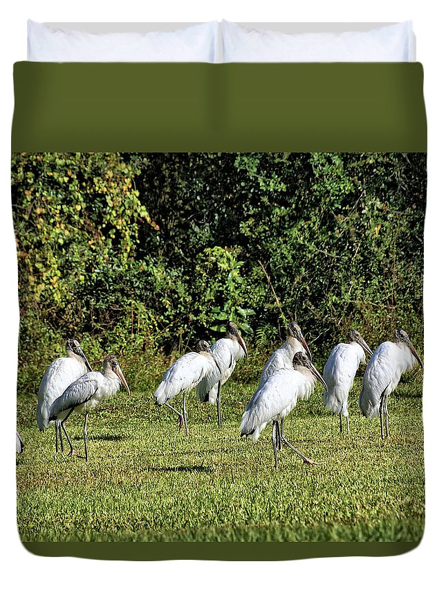 Animals Duvet Cover featuring the photograph Wood Storks 2 - There Is Always One In A Crowd by John Trommer