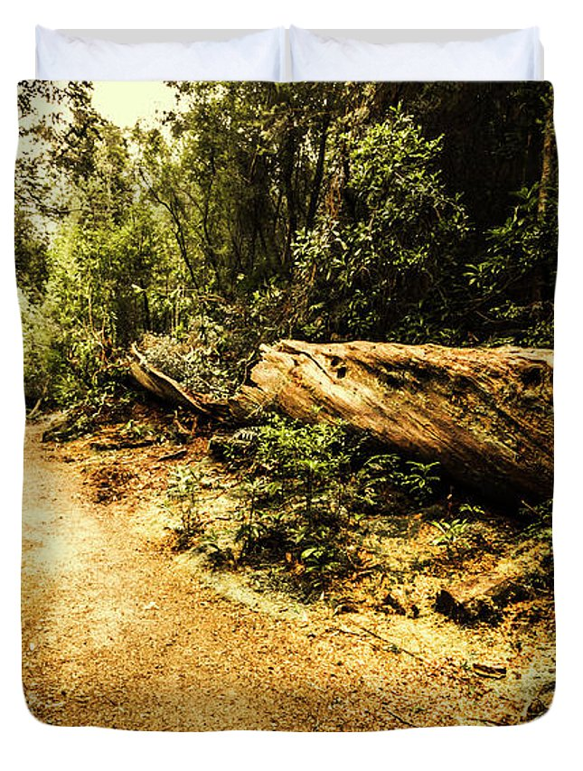 Fallen Tree Photographs Duvet Covers