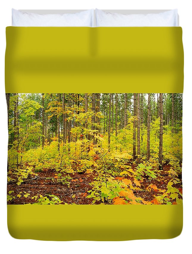 Woods Duvet Cover featuring the photograph Woodland Panorama by Michael Peychich