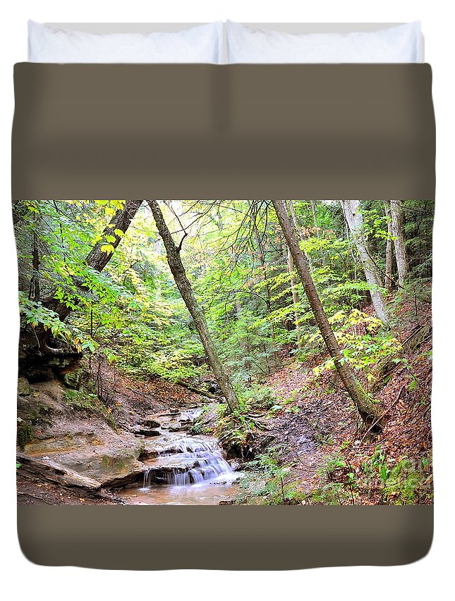 Brook Duvet Cover featuring the photograph Woodland Stream by Terri Gostola
