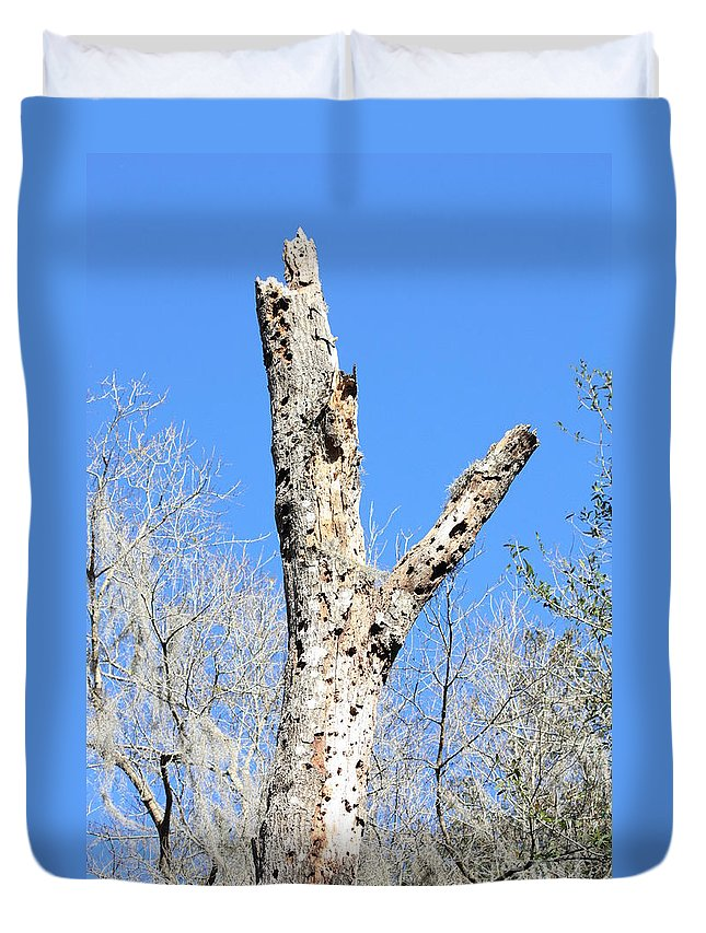 Old Tree Duvet Cover featuring the photograph Woodpecker Was Here by Carol Groenen