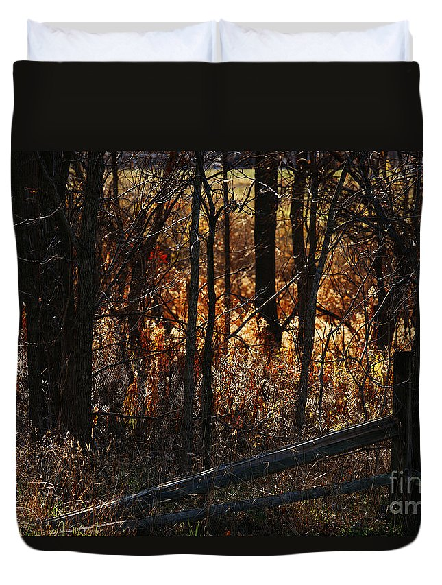 Michigan Duvet Cover featuring the photograph Woods - 1 by Linda Shafer