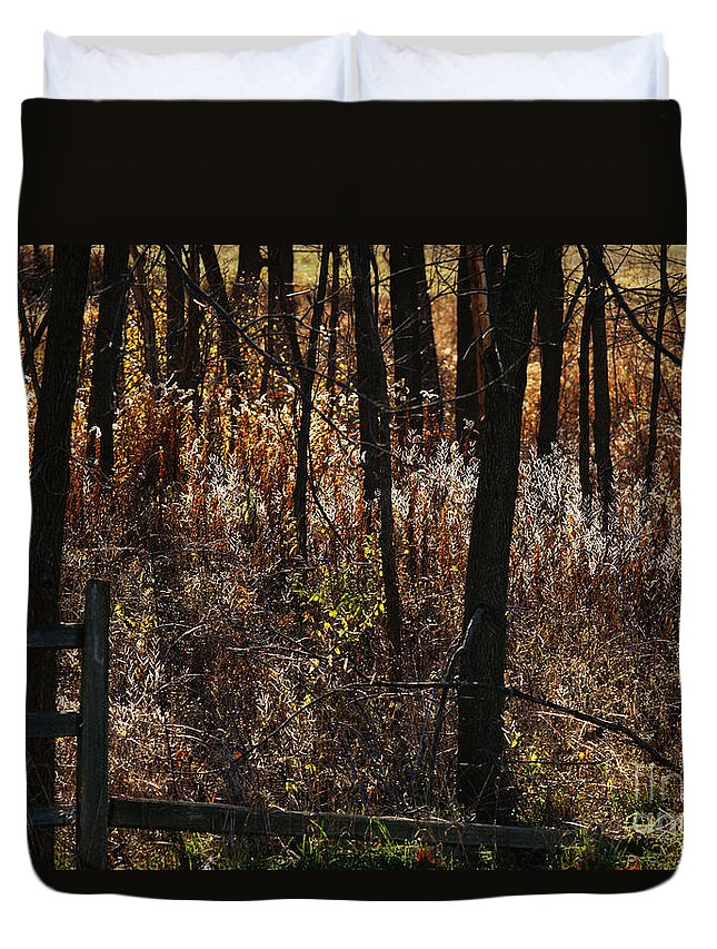 Michigan Duvet Cover featuring the photograph Woods - 2 by Linda Shafer