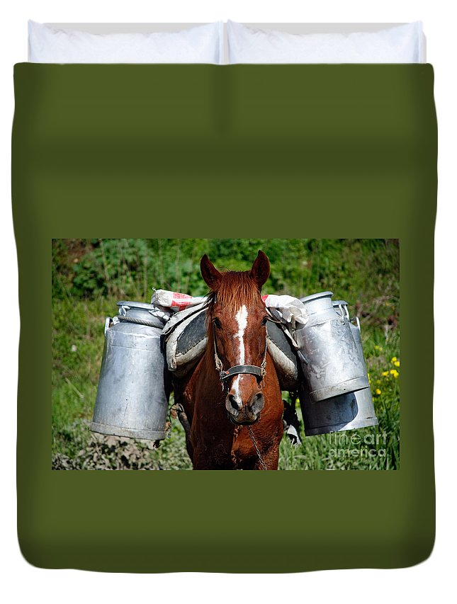 Countryside Duvet Cover featuring the photograph Work Horse At The Azores by Gaspar Avila