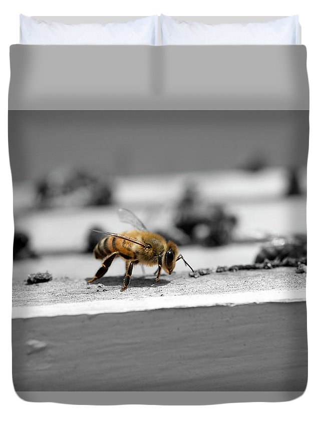 Honey Duvet Cover featuring the photograph Worker Bee by Alana Krantz