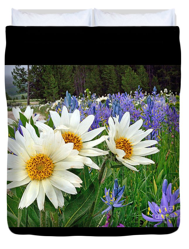 Wyethia Duvet Cover featuring the photograph Wyethia And Camas by Brad Christensen