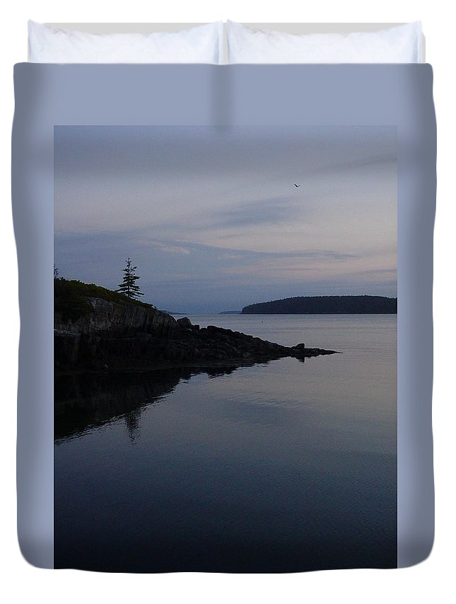 Duvet Cover featuring the photograph Xmas Tree by Kelly Mezzapelle