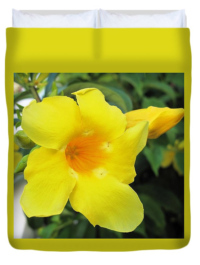 Hibiscus Duvet Cover featuring the photograph Yelllow by Ian MacDonald