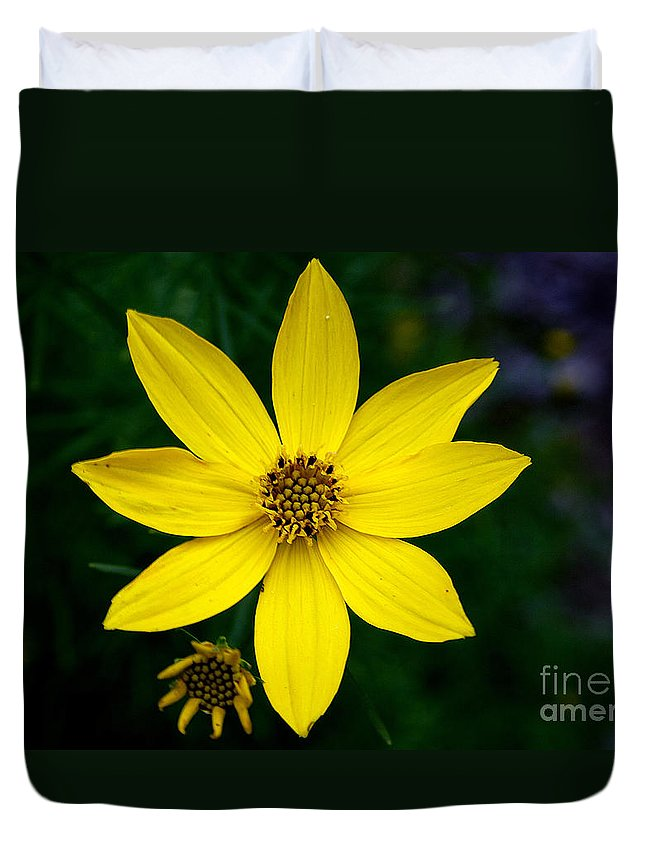 Adrian Laroque Duvet Cover featuring the photograph Yellow by LR Photography