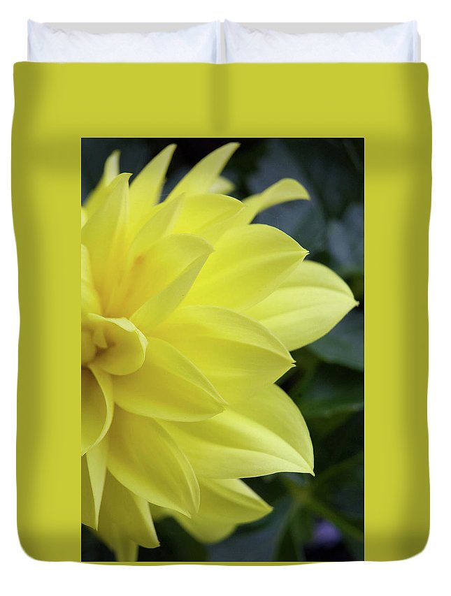 Art Duvet Cover featuring the photograph Yellow by Alan Look