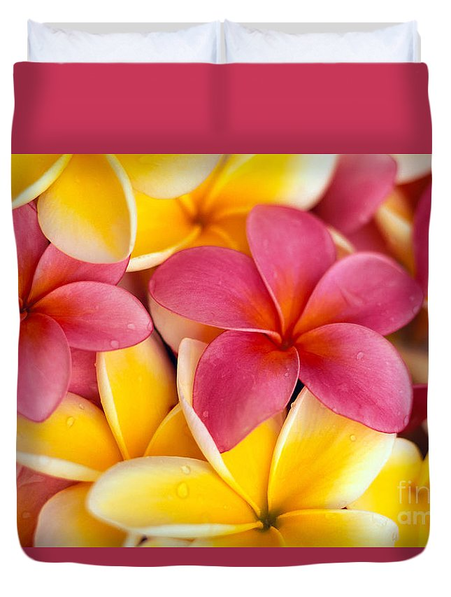Aloha Duvet Cover featuring the photograph Yellow And Pink by Dana Edmunds - Printscapes