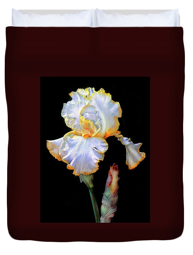 Iris Duvet Cover featuring the photograph Yellow And White Iris by Dave Mills