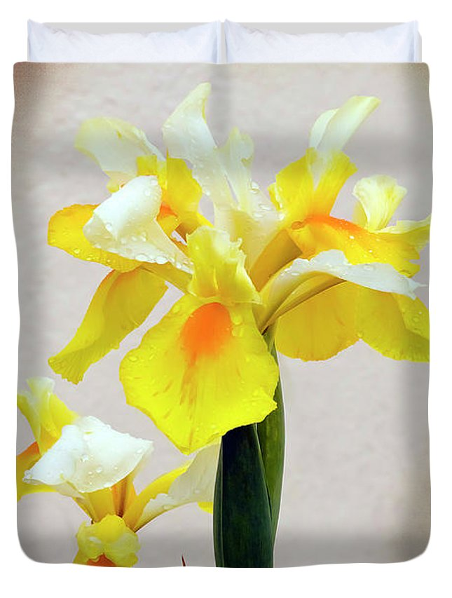 Flower Duvet Cover featuring the photograph Yellow And White Iris Textured by Terri Waters