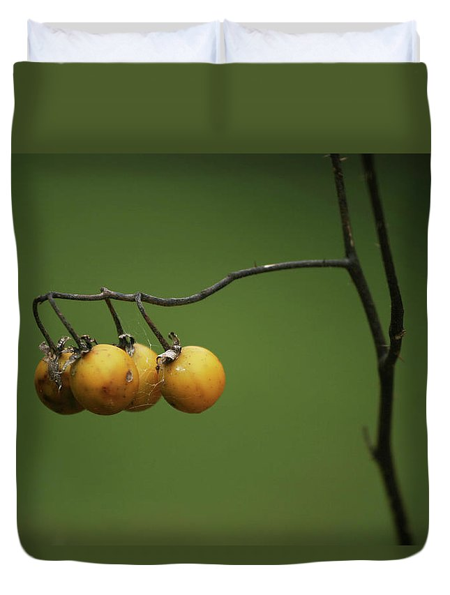 Yellow Duvet Cover featuring the photograph Yellow Berries by Grant Groberg