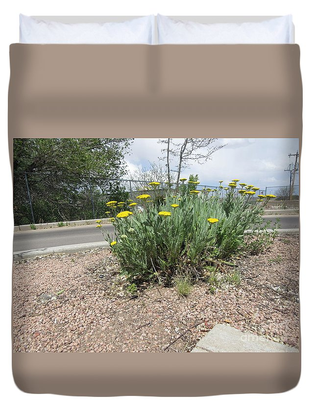 Yellow Duvet Cover featuring the photograph Yellow Blooms by Frederick Holiday