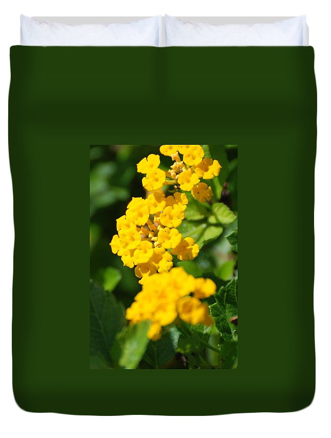 Flowers Duvet Cover featuring the photograph Yellow Blooms by Rob Hans