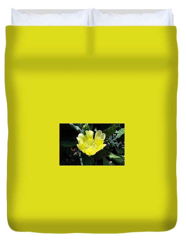 Cactus Duvet Cover featuring the photograph Yellow Bonnet, Cactus by Sandra Reeves