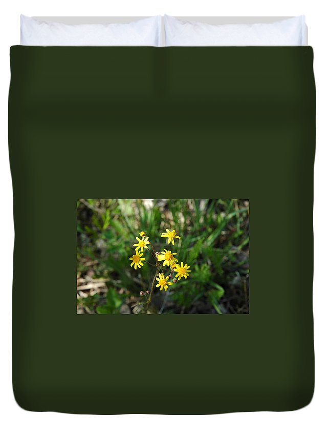 Usa Duvet Cover featuring the photograph Yellow Bouquet On The Trail by LeeAnn McLaneGoetz McLaneGoetzStudioLLCcom